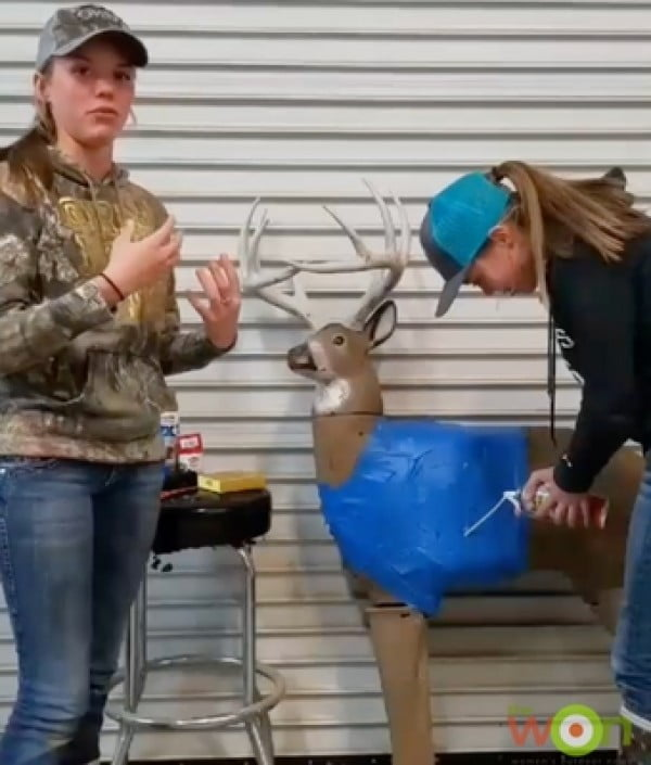 DIY: How to Repair and Restore a 3D Archery Target