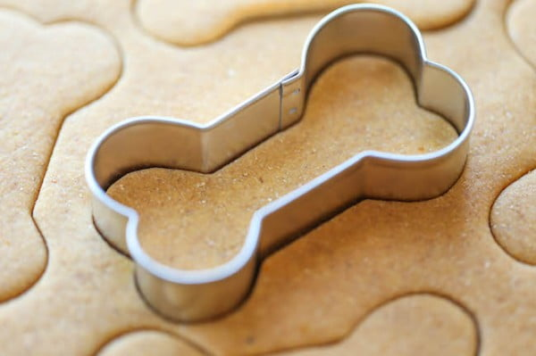 Best Homemade Dog Biscuits and Treats for Finicky Dogs