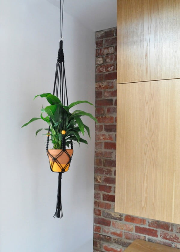 DIY Project: Make Your Own Macrame Plant Hanger