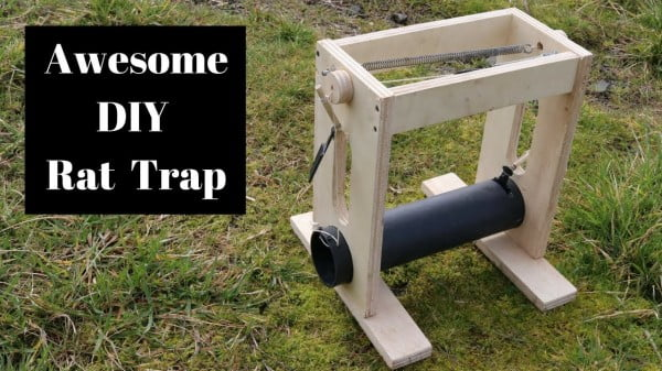 How To Make A Homemade Rat Trap Inspired By The Tilong Bamboo Rat Trap.