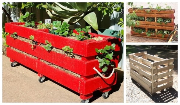 DIY Vertical Strawberry Planter from Recycled Pallet
